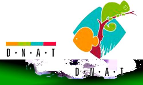 Acuarios dnat ecosistemas for Acuarios a medida