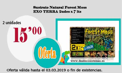Sustrato Natural Forest Moss