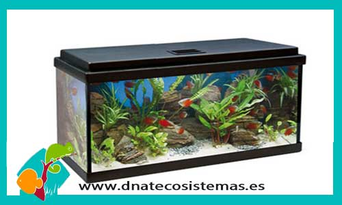Acuario aqualed 64lts optimus 200 portes gratis for Comida viva para peces