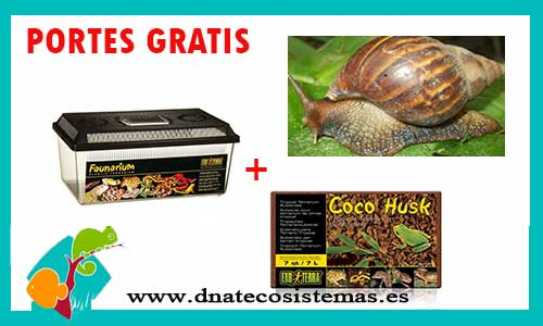 OFERTA PACK CARACOL