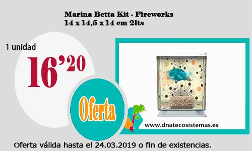 Marina Betta Kit - Fireworks